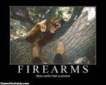 firearms-bear-camera-demotivational-posters.jpg