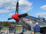 Mustang-2.jpg