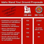 stand your ground bills.jpg