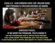 legal-u-s-gun-owners-have-300-milion-guns-and-probablyatrillion-21323720.png